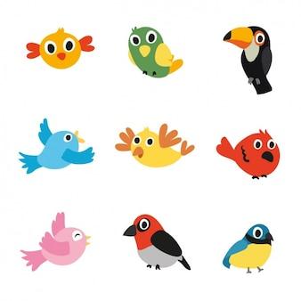 Gekleurde vogels collectie