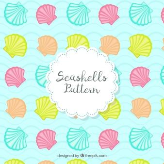 Gekleurde zeeschelpen patronen