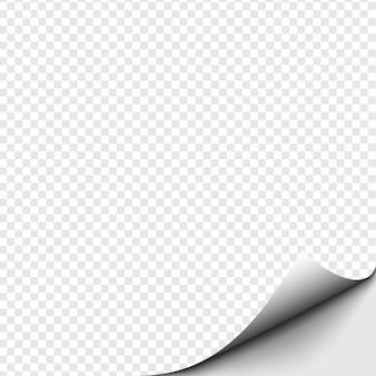 Gekrulde hoek van papier op transparante achtergrond met zachte schaduwen, realistische papierpagina mock up.