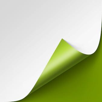 Gekrulde hoek van wit papier op groene achtergrond