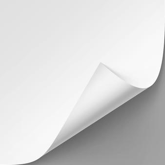 Gekrulde hoek van wit papier