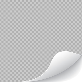 Gekrulde transparante afgeronde paginahoek met schaduw op witte achtergrond. blanco vel papier.