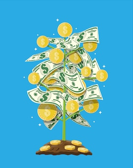 Geld muntboom. groeiende geldboom.