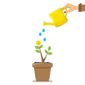 Geldboom, hand met kan waterboom water geven.