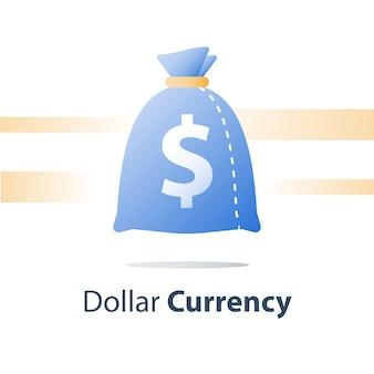 Geldzak, zak met dollarvaluta, snelle lening, gemakkelijk contant geld, financieel fonds, pictogram