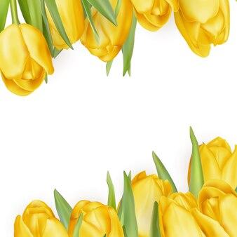 Gele bloemen die op wit worden geïsoleerd.