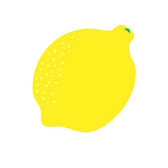 Gele citroen citrusvruchten sappige zure verse schil zomerkoude limonade gemaakt van citroen