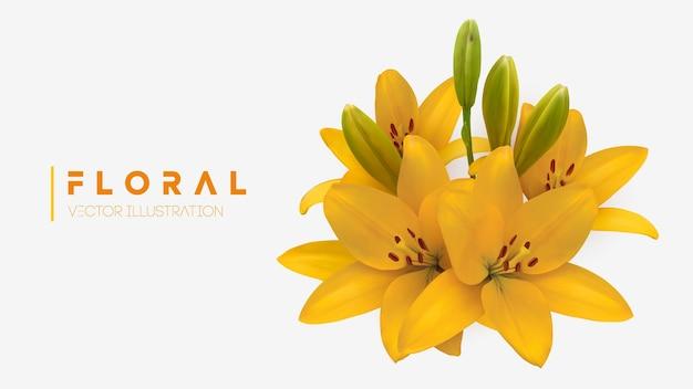 Gele lelie bloem boeket geïsoleerd vector illustratie eps 10vector illustratie van gele lelies