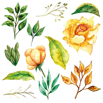 Gele roos set en zijn bladeren aquarel