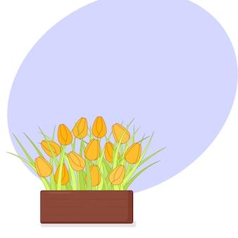 Gele tulpen in houten kist.