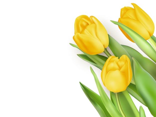 Gele tulpenbloemen.