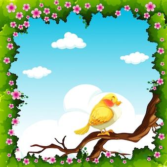 Gele vogel op de tak