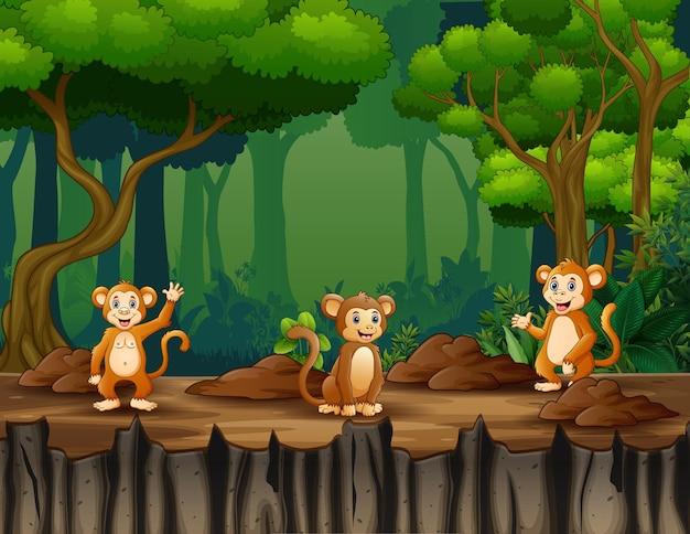 Gelukkig drie van apen die in de jungle leven Premium Vector