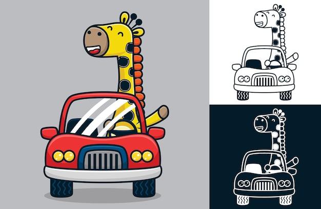 Gelukkig giraf rijdende auto. vectorbeeldverhaalillustratie in vlakke pictogramstijl