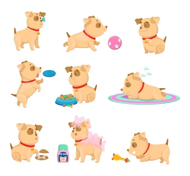 Gelukkig puppy dagelijkse routine cartoon illustraties instellen