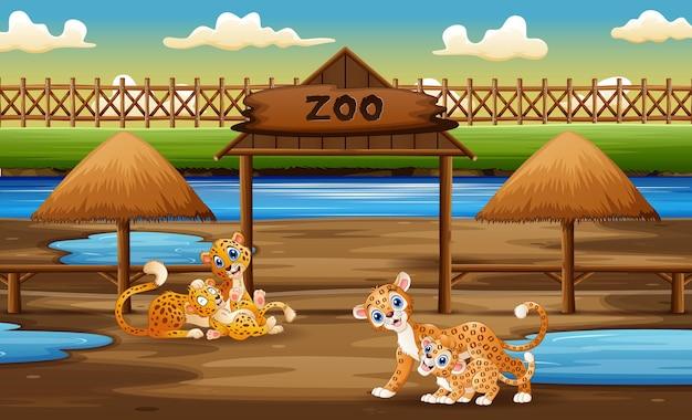Gelukkig wild dier met hun welpen die in de dierentuin genieten