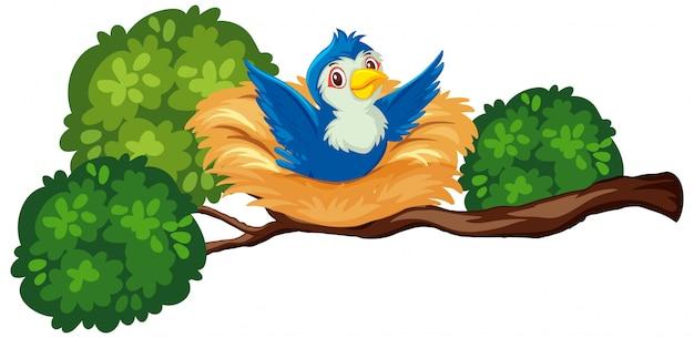 Gelukkige blauwe vogel op het nest