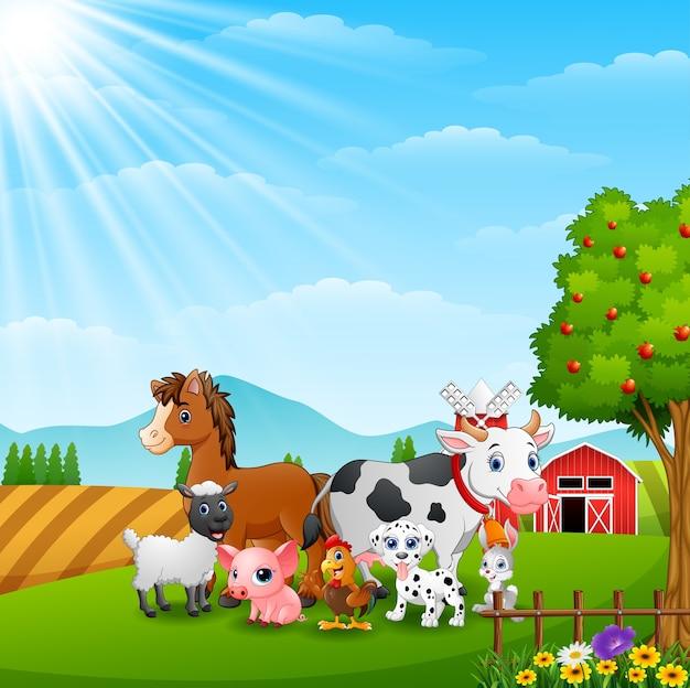 Gelukkige dieren bij landbouwbedrijfachtergrond op daglicht