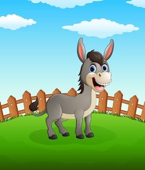 Gelukkige ezelsbeeldverhaal op het gebied