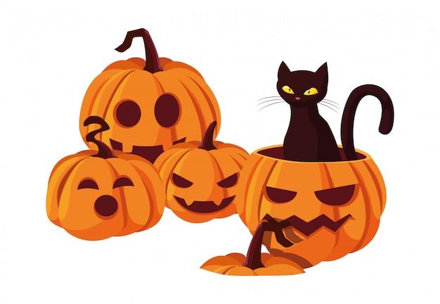 Gelukkige halloween-viering van de pompoenkat