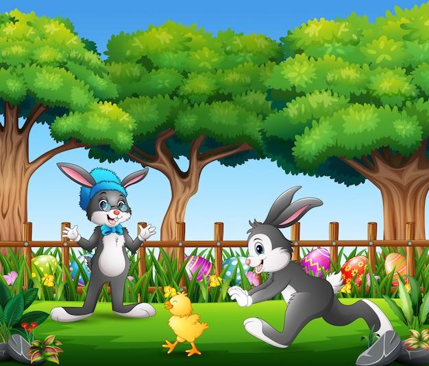 Gelukkige konijntjes die met babykuiken spelen in het park