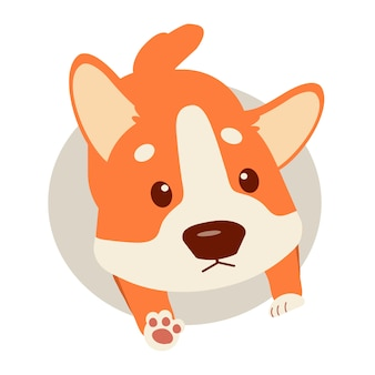 Gelukkige puppy corgi