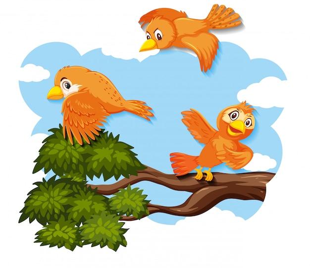 Gelukkige vogel die in aard vliegt