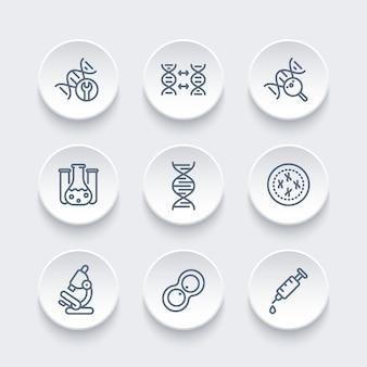 Genetica lijn pictogrammen, dna-keten, cel, onderzoek, lab, genetische modificatie, vectorillustratie