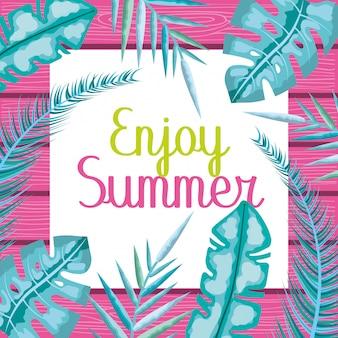 Geniet van de zomerkaart