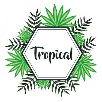 Geometrisch frame met tropische bladeren