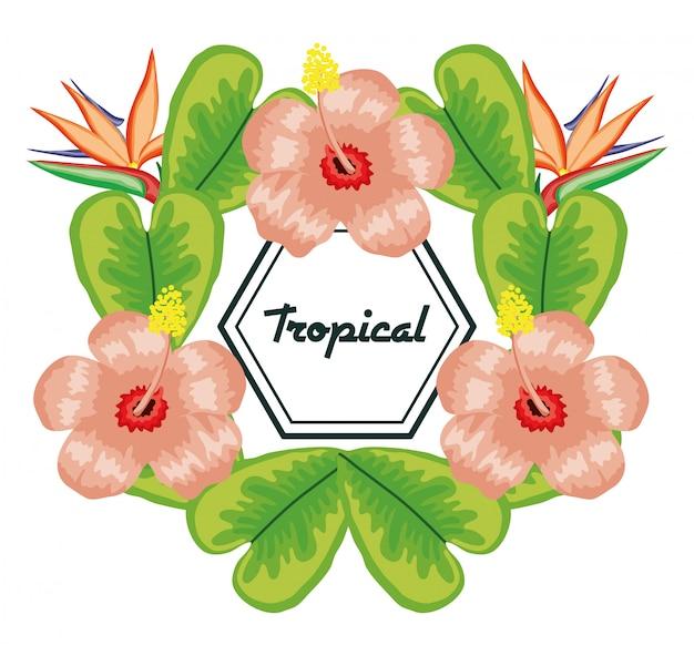 Geometrisch frame met tropische bloemen en bladeren