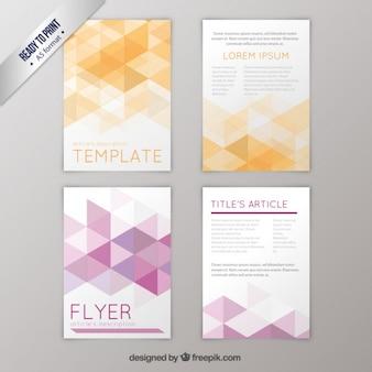 Geometrische flyers pak