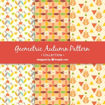 Geometrische patronen van de herfst