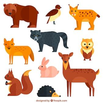 Geometrische wilde dieren