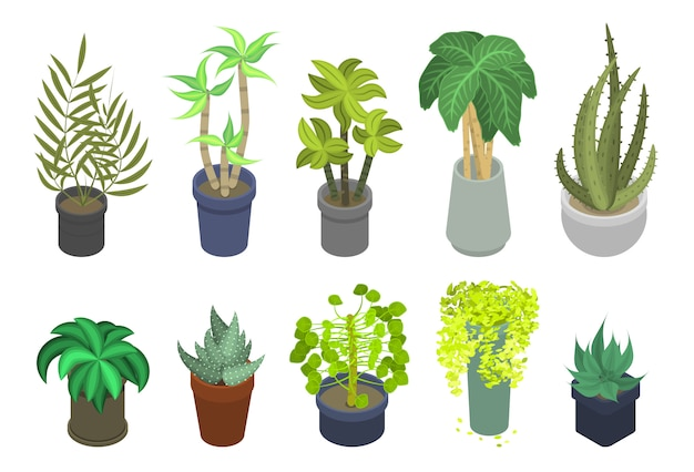 Geplaatste houseplantspictogrammen, isometrische stijl