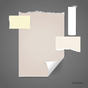 Gescheurd papier met verschillende maten