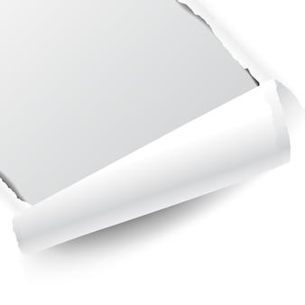 Gescheurd wit papier