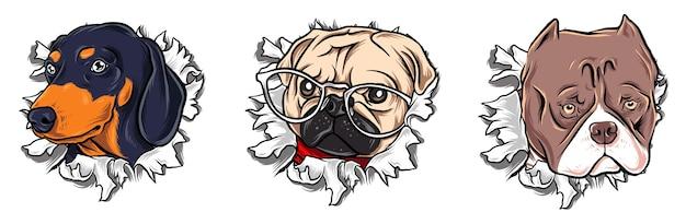 Gescheurde papieren hond