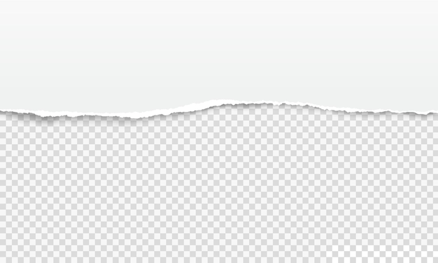 Gescheurde papierrand, witte gescheurde paginastrook. realistische horizontale haveloze notebook blad, gescheurde papieren rand op transparante vector achtergrond. beschadigde paginarand, scrapbooking-element