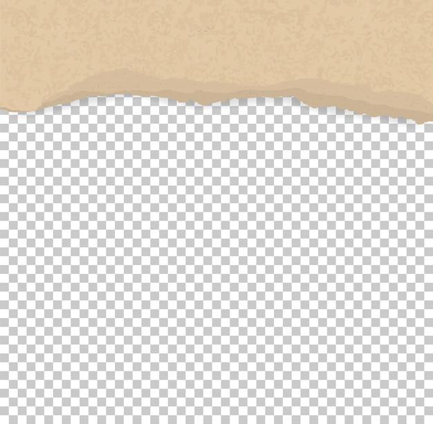 Gescheurde papierranden voor achtergrond