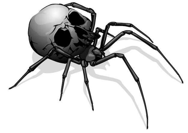 Geschilderde spinnenschedel als enge tekening