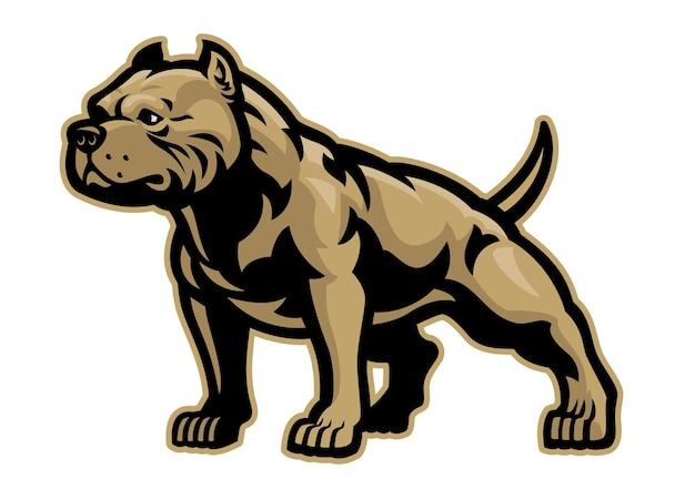 Gespierd atletisch lichaam van pitbullhond