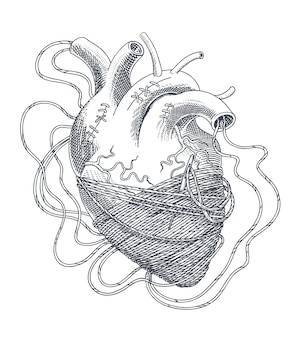 Gestileerde afbeelding van hart verstrikt in draden. vector