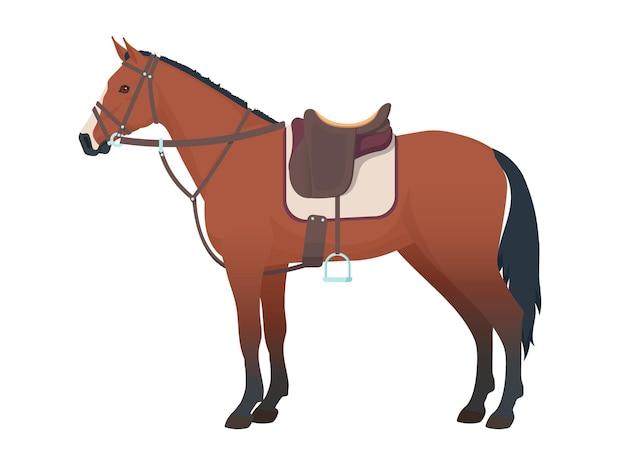 Getuigd paard staand