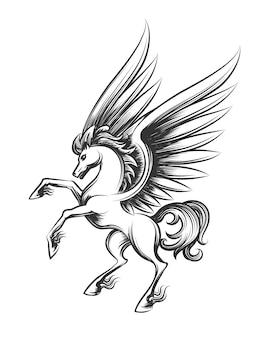 Gevleugelde paard gravure illustratie