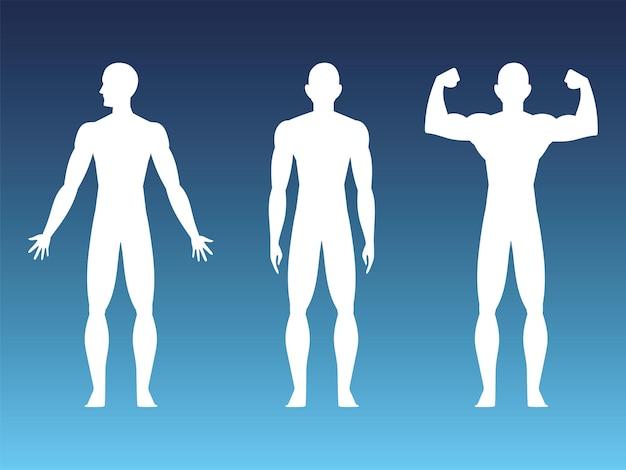 Gezond menselijk lichaam sterk