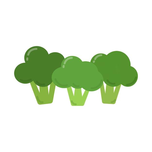 Gezonde groene broccoli grafische illustratie