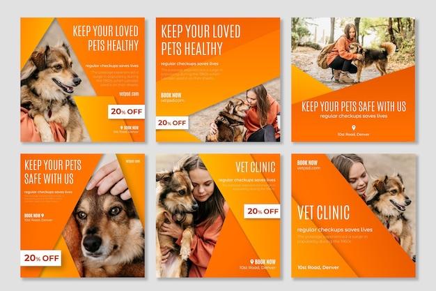 Gezonde huisdieren veterinaire kliniek instagram-berichten