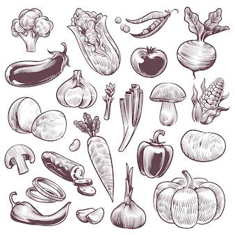 Gezonde voeding natuurlijke groente