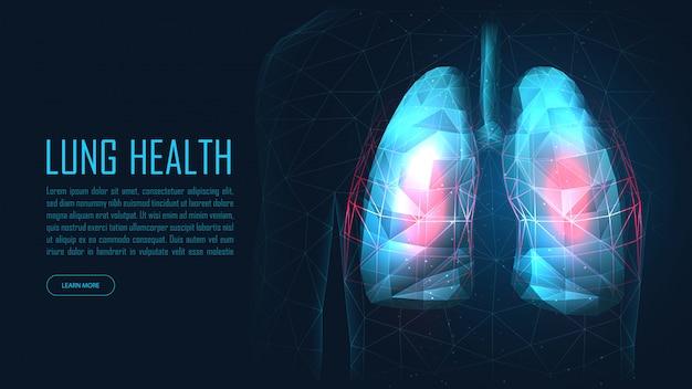 Gezondheid banner